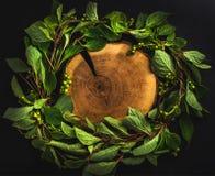 Bakgrund med Schisandra den chinensis kransen runt om träbräde på mörker, kopieringsutrymme Royaltyfri Foto