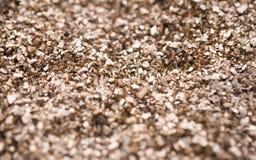 Bakgrund med skinande fina beigea kiselstenar, i närbild, Royaltyfri Foto