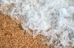 Bakgrund med snäckskalsand och vatten av vågen Arkivbilder