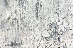 Bakgrund med sprucken vit- och grå färgmålarfärg Textur av den gamla grova beläggningen En vägg med ett ovanligt, abstrakt begrep Arkivfoto
