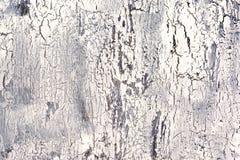 Bakgrund med sprucket ljus - grå färger och vit målar Textur av den gamla grova beläggningen En vägg med ett ovanligt, abstrakt b Royaltyfri Fotografi