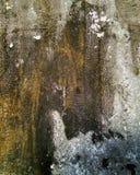 Bakgrund med strukturen och textur av den gamla metallväggen royaltyfri fotografi