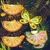 Bakgrund med tropiska frukter och fjärilen Fotografering för Bildbyråer