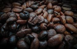 Bakgrund med väl grillade kaffebönor arkivbilder