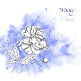 Bakgrund med vattenfärger och flowers-07 royaltyfri illustrationer