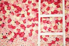 Bakgrund mycket av vita och rosa rosor Royaltyfri Fotografi