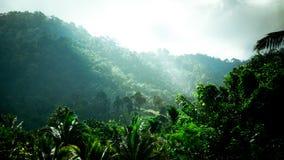 Bakgrund natur, solljus, dimmigt berglandskap med sunb royaltyfria bilder