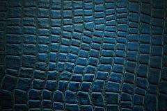 Bakgrund och textur av huden Arkivfoton