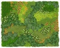 Bakgrund och textur för lodlinje trädgårds- Grön vägg eller blomsterrabatt som isoleras på vit bakgrund Top beskådar visualizatio Arkivbild