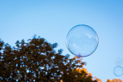 Bakgrund Ora för natur för blå himmel för såpbubbla för singel rund rund Royaltyfri Fotografi