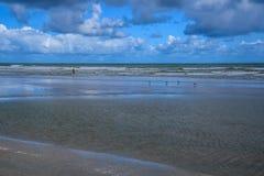 Bakgrund på en strand med fåglar och spela för pojke Royaltyfri Bild