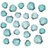 bakgrund shells vektorn Arkivbild