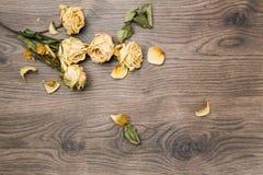 Bakgrund som är trä med guling förbi rosor Royaltyfria Foton