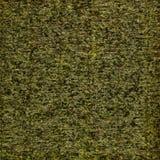 Bakgrund som göras från torkade alger fotografering för bildbyråer
