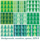 Bakgrund Spruce Arkivbild