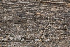 Bakgrund textur av det gamla planerade brädet arkivbilder