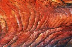 Bakgrund textur, kvarlevor av koraller Royaltyfria Bilder