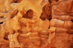 Bakgrund textur, kvarlevor av koraller Royaltyfri Fotografi