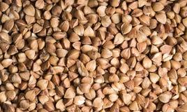 Bakgrund textur, rumpan buckboarden Grillad bovete Användbar rekvisita av bovete garnering Ingrediens produkt, kock royaltyfri foto
