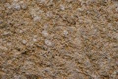 Bakgrund textur, sten Gammal wallBro för abstrakt texturgrunge Fotografering för Bildbyråer