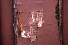 Bakgrund trä, dörr, målarfärg, brunt, design, sjaskig stil royaltyfri bild