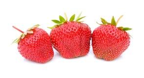 bakgrund vita isolerade röda strawberrys Fotografering för Bildbyråer