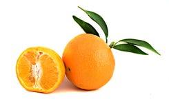 bakgrund vita isolerade tangerines Fotografering för Bildbyråer