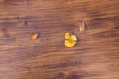 Bakgrunden av det bruna träbrädet som ligger på ett gult blad arkivfoton
