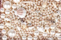 Bakgrunden av pärlor och marsihskal royaltyfri foto