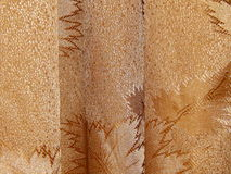 Bakgrunden göras av torkduken Royaltyfria Bilder