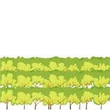 Bakgrunder av gräs Royaltyfria Foton