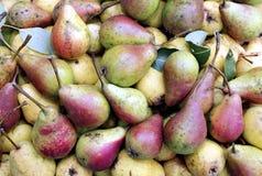 Bakgrunder av mogna saftiga gula päron Royaltyfri Bild