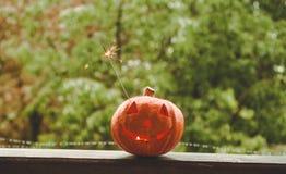 Bakgrundsallhelgonaaftonpumpa på en hemtrevlig fönsterfönsterbräda med en röd pläd Helt pumpa och tomtebloss utomhus Lycklig allh fotografering för bildbyråer