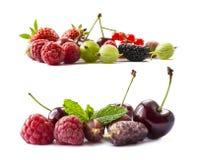 bakgrundsbärfrukter isolerade white Mogna hallon, körsbär, jordgubbar, krusbär, röda vinbär och mulberr Royaltyfri Fotografi