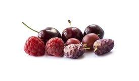 bakgrundsbärfrukter isolerade white Mogna hallon, körsbär, krusbär och mullbärsträd Bakgrund av blandningfrukt Arkivfoto