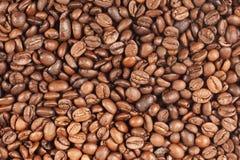 bakgrundsbönakaffe Fotografering för Bildbyråer