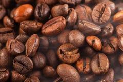 bakgrundsbönor stänger upp kaffetextur Royaltyfri Foto