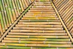 bakgrundsbambu Royaltyfri Fotografi