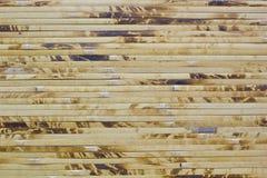 bakgrundsbambu Fotografering för Bildbyråer