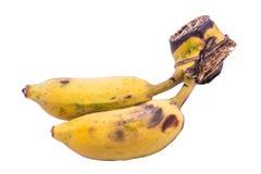 bakgrundsbananen som fäster den lätta mappen ihop, inkluderar banan som är mogen till vitt arbete royaltyfria bilder