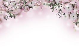 bakgrundsbanret blommar datalistor little rosa spiral vektor illustrationer