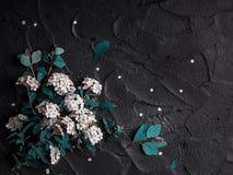 bakgrundsbanret blommar datalistor little rosa spiral royaltyfri fotografi
