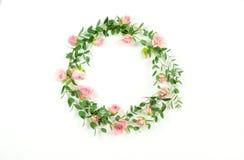 bakgrundsbanret blommar datalistor little rosa spiral Kransram som göras av gräns - rosa rosblommor och eukalyptusfilialer royaltyfri foto
