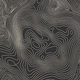 Bakgrundsbegrepp för Topographic översikt med utrymme för din kopia Topografilinjer konstkontur, berg som fotvandrar slingan stock illustrationer