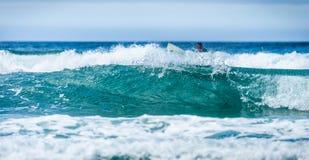 Bakgrundsbild av stora vågor och en surfare arkivbilder