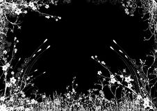 bakgrundsblack Royaltyfri Foto