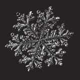 bakgrundsblack dekorerar nytt snowflakewhiteår vektor illustrationer