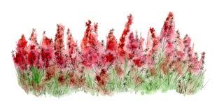 bakgrundsblommabild little rött passande Färgglad vattenfärgillustration royaltyfri illustrationer