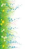 bakgrundsblommagräs Arkivbild