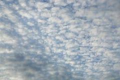 bakgrundsbluen clouds den mycket små skyen Arkivbilder